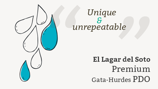 description El Lagar del Soto Premium Gata-Hurdes PDO
