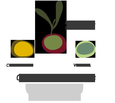 composicion coupage jacoliva aove (manzanilla cacereña + verdial + cornicabra)