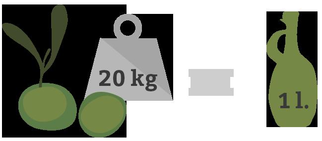 se encesitan 20kg de manzanilla cacereña para elaborar 1 litro de aceite